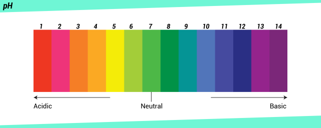 pH scale from acidic to neutral to basic
